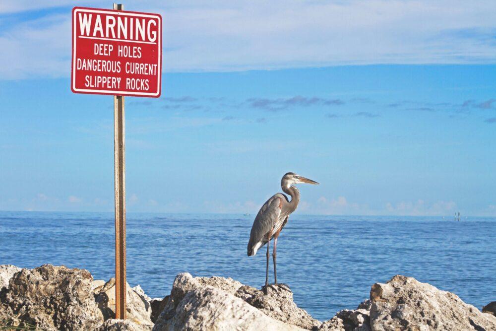 caution, warning,alert 違いと意味 「注意!」